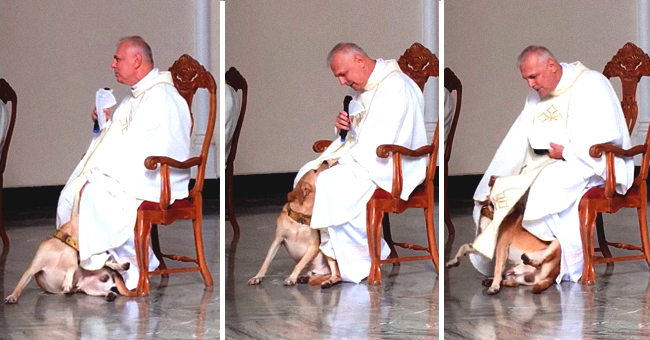 Frisky Dog Crashes Church Service, but the Priest Has the Best Reaction to It