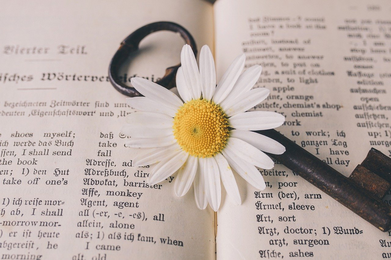 An open book with a key and a flower lying on top of the pages | Photo: Pixabay/suju-foto