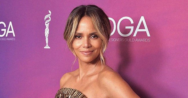 Halle Berry and Boyfriend Van Hunt Hold Hands While Posing in Improvised Halloween Outfits