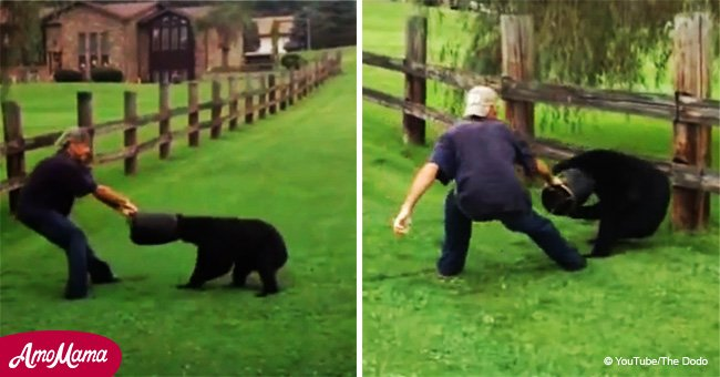 Video shows daring rescue effort of a bear with a bucket stuck on his head