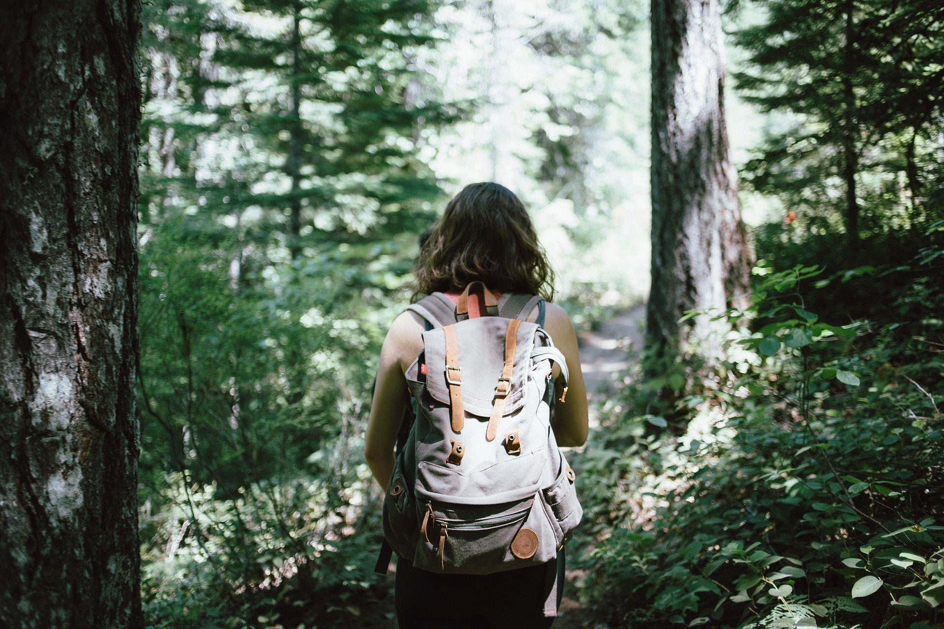 Pictured - A woman carrying a gray backpack walking in the woods | Source: Pixabay