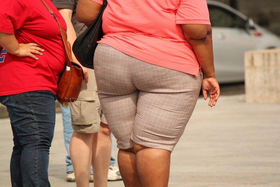 Mujer con sobrepeso│ Imagen tomada de: Pixabay