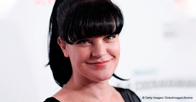 NCIS Pauley Perrette Gives an Update on Her Life, and Fans Are Excited