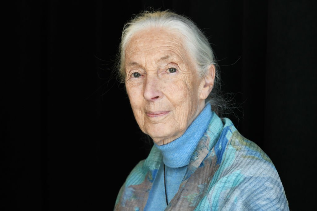 Dr. Jane Goodall attends the TIME 100 Summit 2019 | Photo: Getty Images