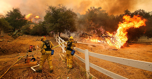 Man Sparked California's Biggest Wildfire While He Was Trying to Kill a Wasp
