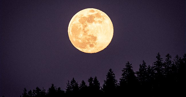 'Wolf Moon' Is the 1st Full Moon in January — Discover the Time and Date to See It