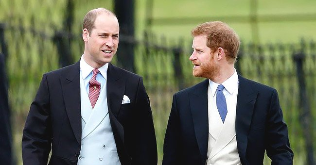 Prince Harry & Prince William's Hurt Continues to This Day, Tell-All Author Claims