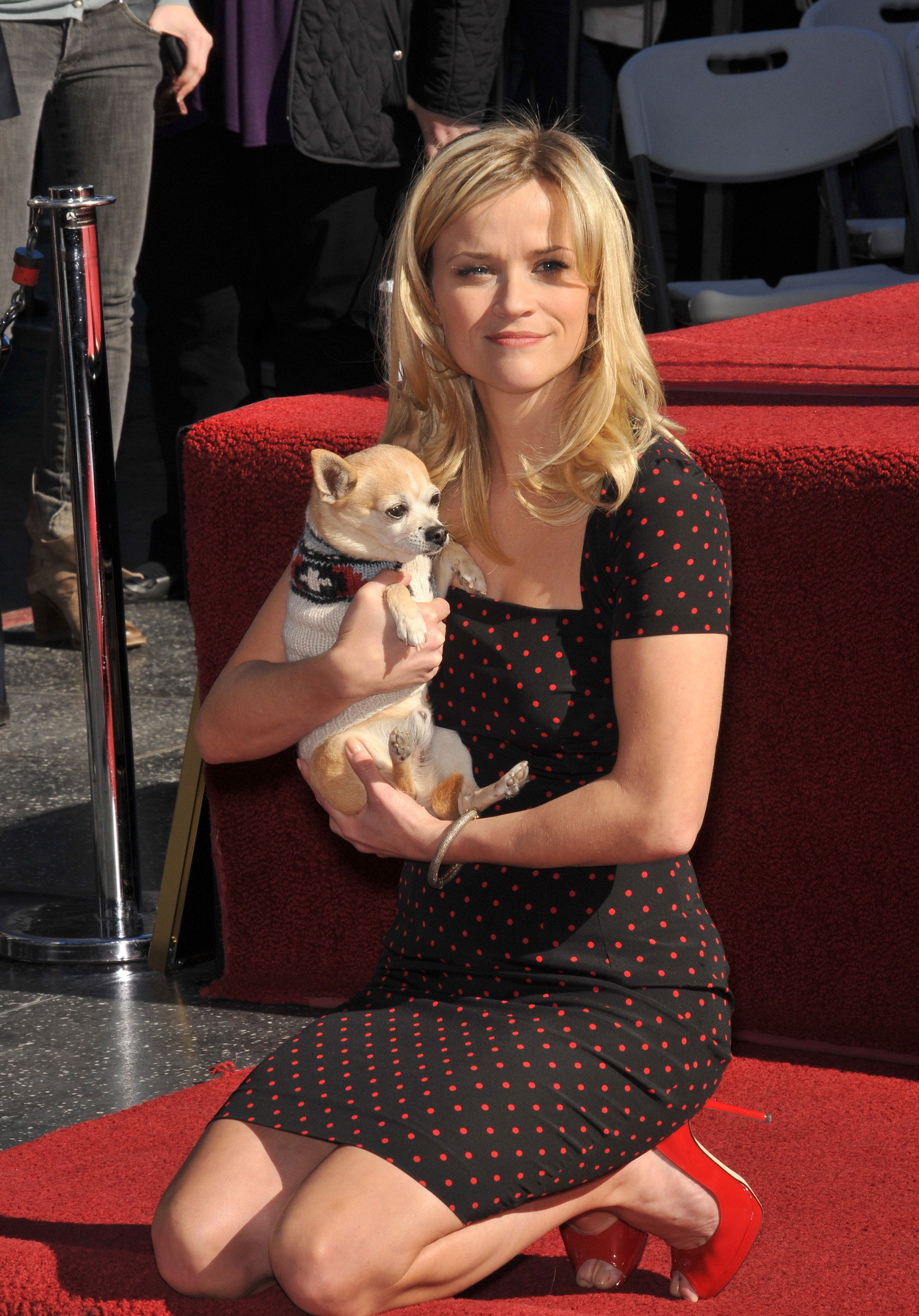 "Reese Witherspoon with ""Bruiser"", her canine co-star in ""Legally Blonde"", on Hollywood Boulevard honored with a star on the Hollywood Walk of Fame 