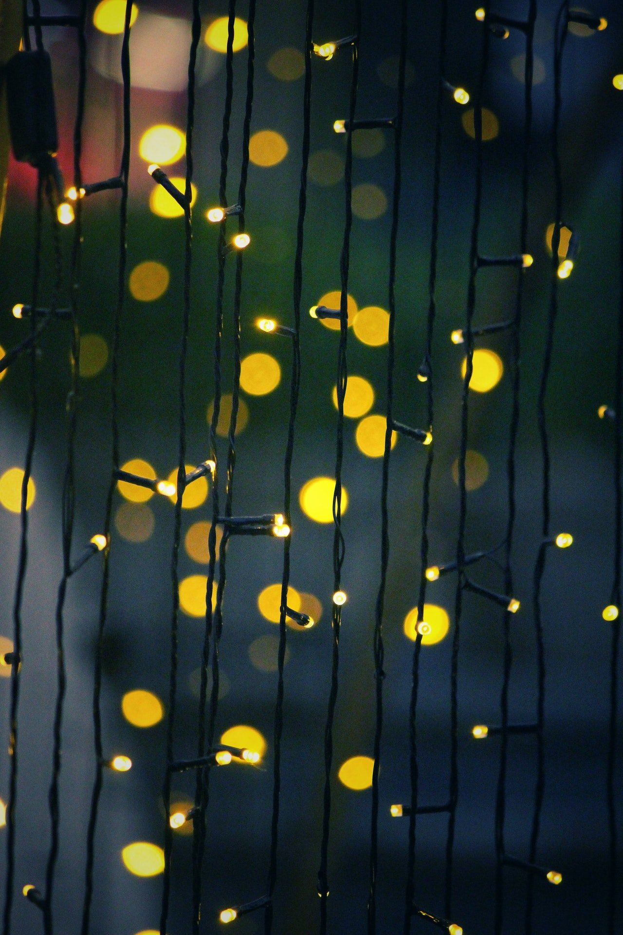 Photo of Christmas lights | Photo: Getty Images