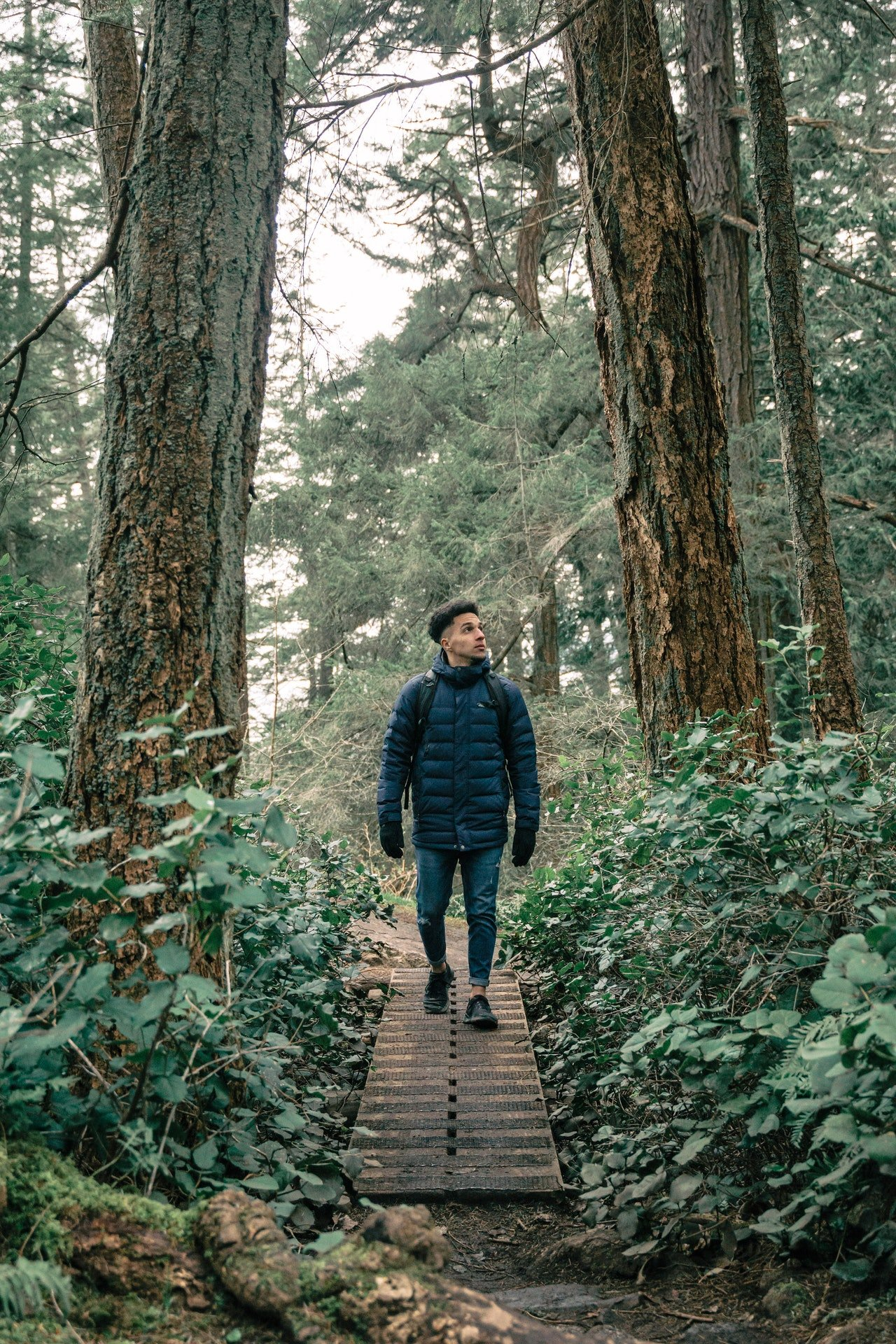 Photo of a man having a walk in the forest   Photo: Pexels