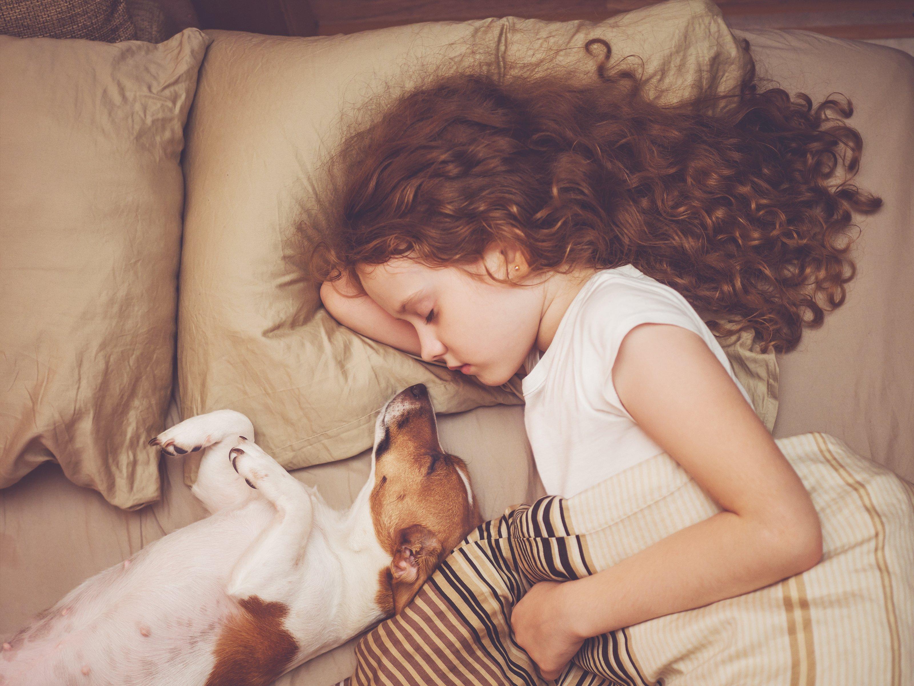Niña con perro abrazada en la cama. Fuente: Shutterstock