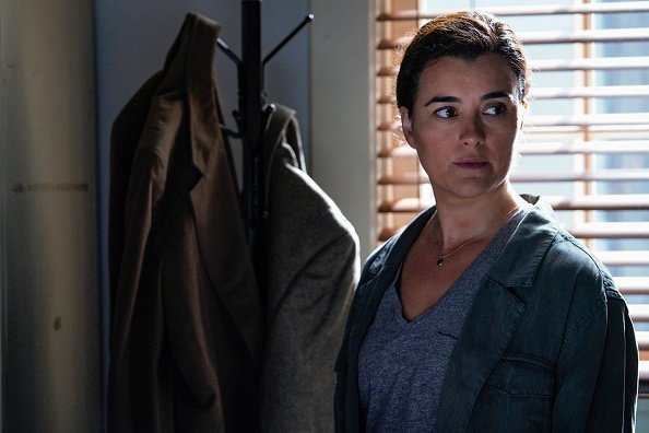 Gibbs and Ziva's rogue investigation takes an unexpected turn when a possible terrorist plot is revealed, on NCIS  | Photo: Getty Images