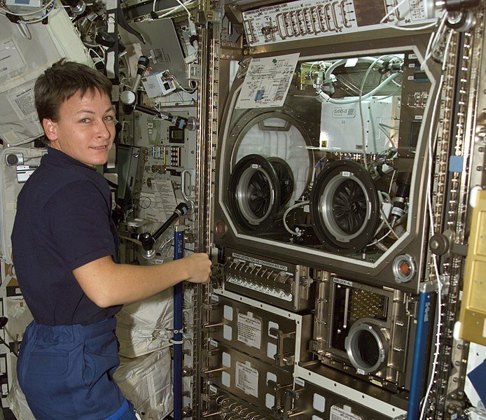 Photo of NASA's Peggy Whitson working on spacecraft | Source: Wikimedia Commons