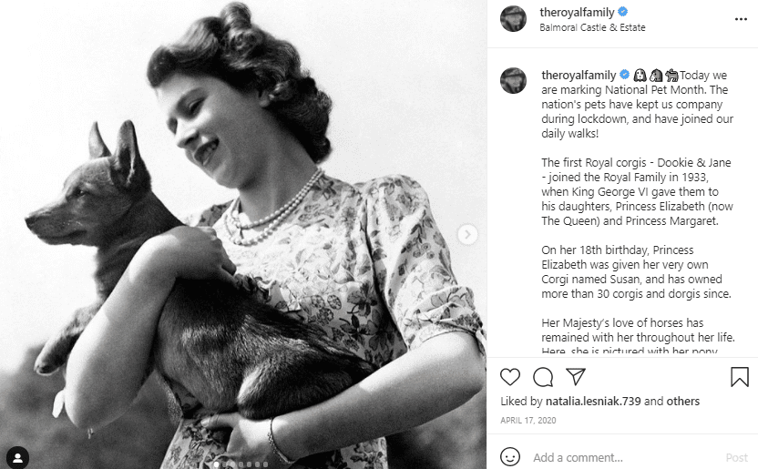 Queen Elizabeth with her beloved pet on National Pets Day | Photo: Instagram/theroyalfamily