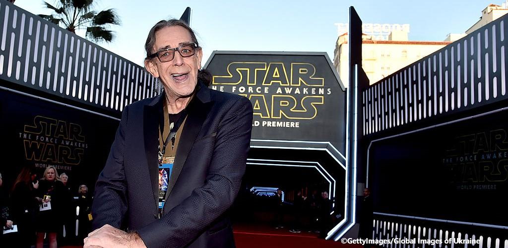 'Star Wars' Chewbacca actor, Peter Mayhew, Dies at Age 74