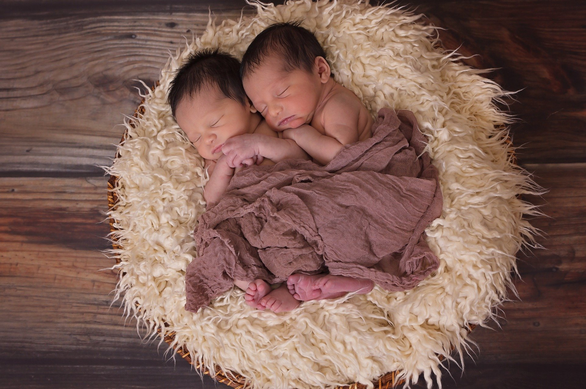 Pictured - An image of newborn twin baby boys sleeping   Source: Pixabay