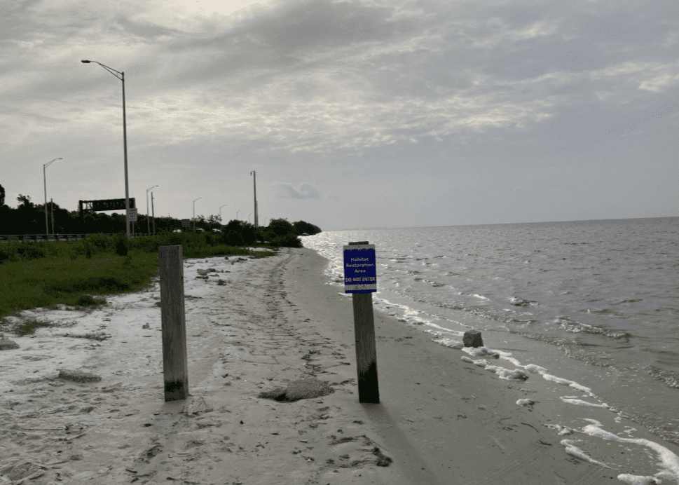 Sign warning individuals not to enter a habitat restoration area. | Source: twitter.com/Clearwater Police Department