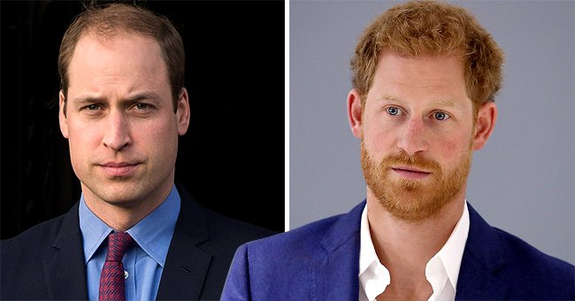 The Sun: Harry and William Insisted to Have Separate Speeches to Unveil Princess Diana's Statue