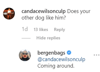 A fan asking a question and Bergen replying | Instagram: @bergenbags