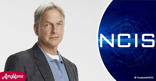 Page Six: Mark Harmon's rep finally responds to rumors he's exiting 'NCIS'