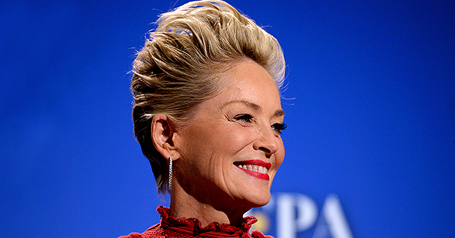 Sharon Stone of 'Basic Instinct' Is a Proud Mother of Three Beautiful Sons - Meet Her Family