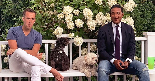 CNN's Don Lemon & Fiancé Tim Malone Melt Hearts Posing with Their Dogs in a Wedding-Like Photo