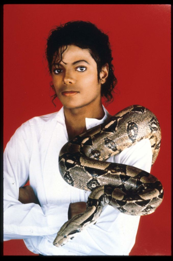 Michael Jackson poses with a boa constrictor on September 15, 1987 in Jackson.   Photo: Getty Images