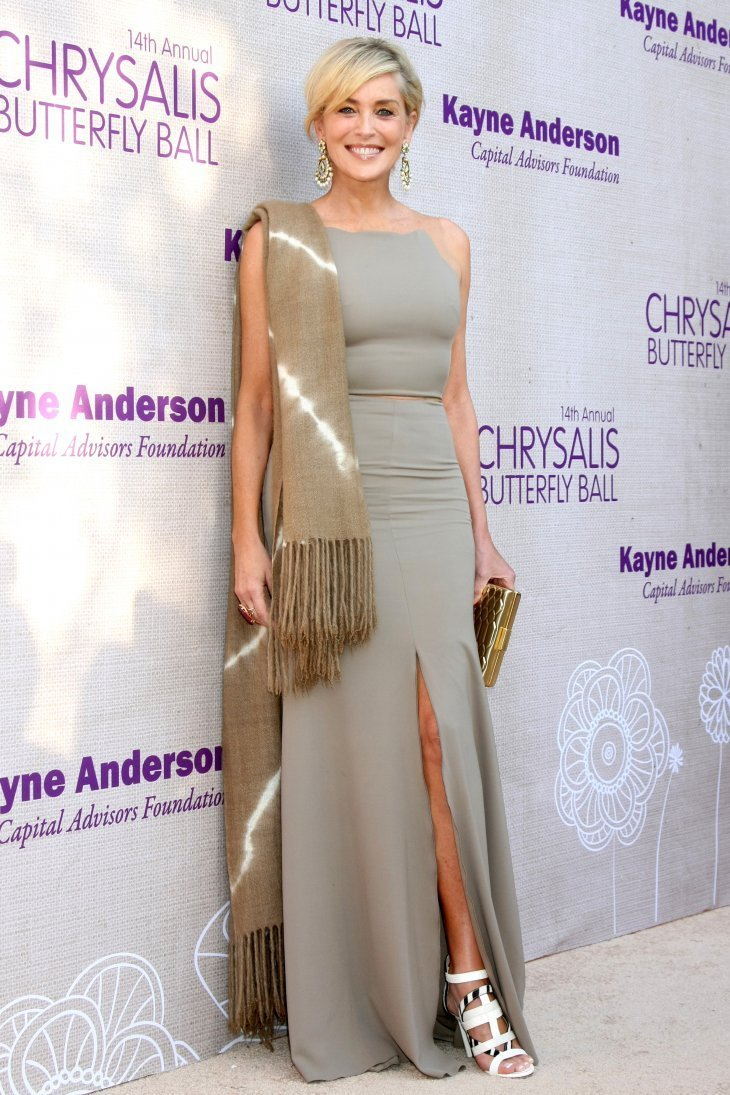 Sharon Stone attends the 14th Annual Chrysalis Butterfly Ball | Photo: Shutterstock
