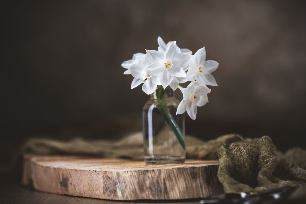 A bouquet of Paperwhite narcissus in a clear bottle vase. | Photo: Shutterstock