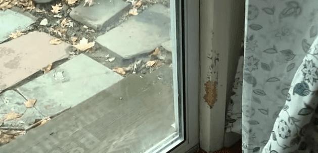 Puerta corrediza de vidrio del hogar. |Imagen:  YouTube.com /Eyewitness News ABC7NY