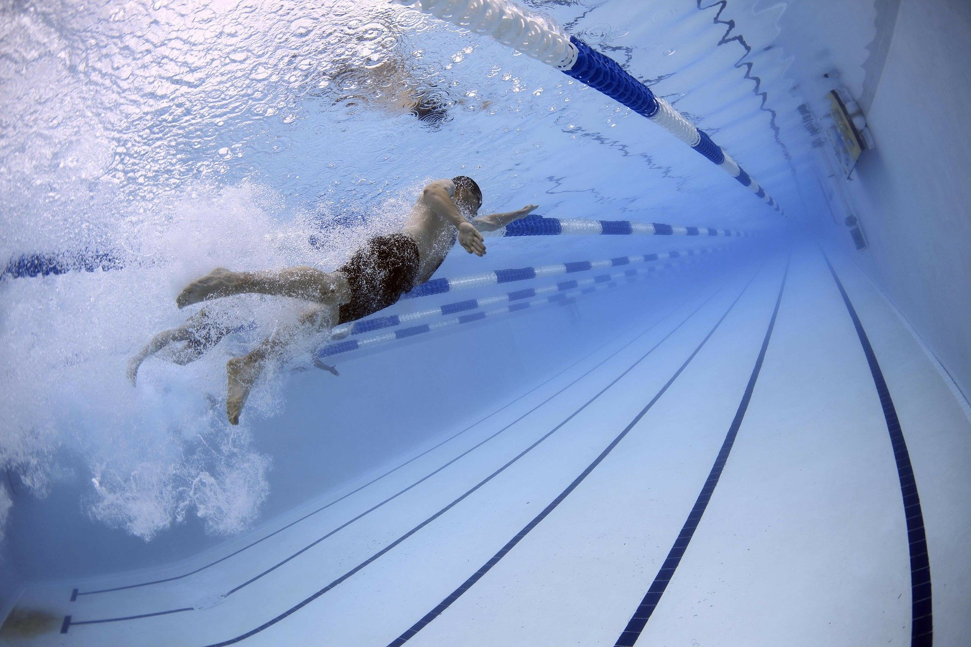 Swimmer in olympic pool | Source: Pixabay