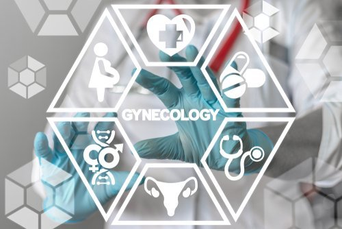 Gynecology healthcare concept. | Source: Shutterstock.