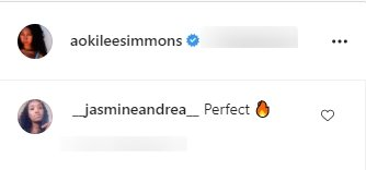 Fan's comment under a picture of Aoki Lee Simmons posted on her Instagram page | Photo: Instagram/aokileesimmons