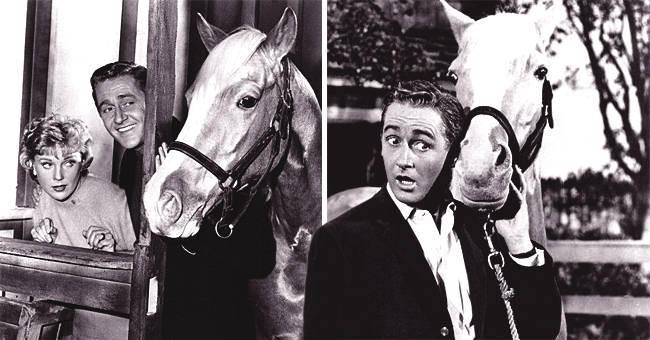 'Mister Ed:' 20 Facts about the '60s Show That Fans Might Not Know