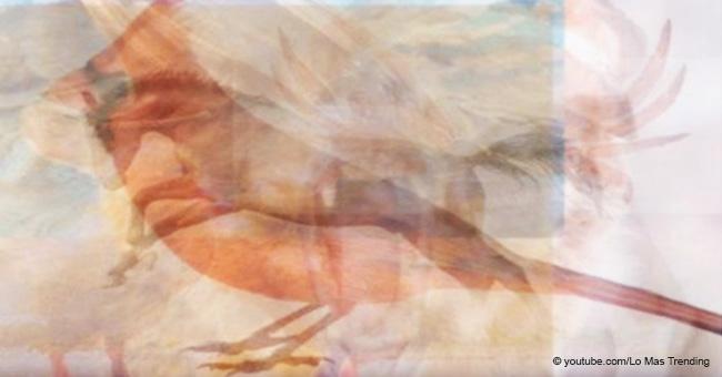 ¿Qué animal viste primero? Revela un secreto escondido de tu personalidad