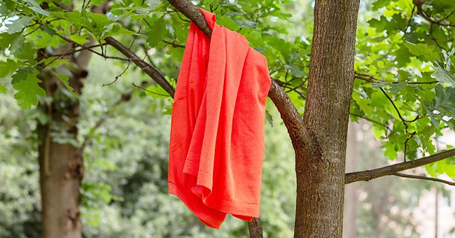 """""""Lets hang our shirts and get this house moving!"""" 
