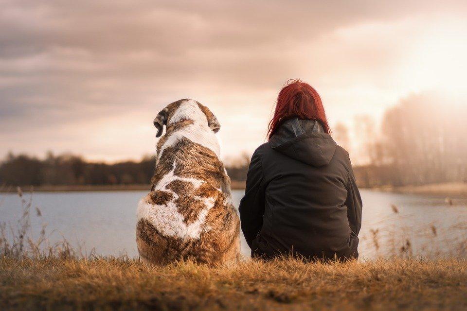 Frau und Hund sitzen am See | Quelle: Pixabay