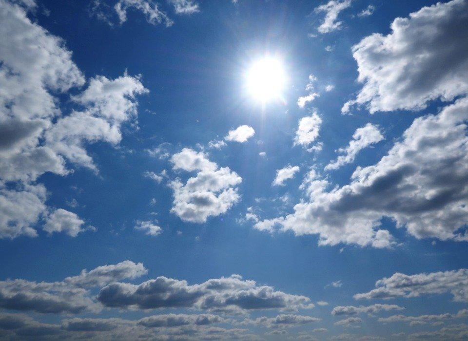 La temperatura puede poner vidas en riesgo durante estos meses │Imagen tomada de: Pixabay
