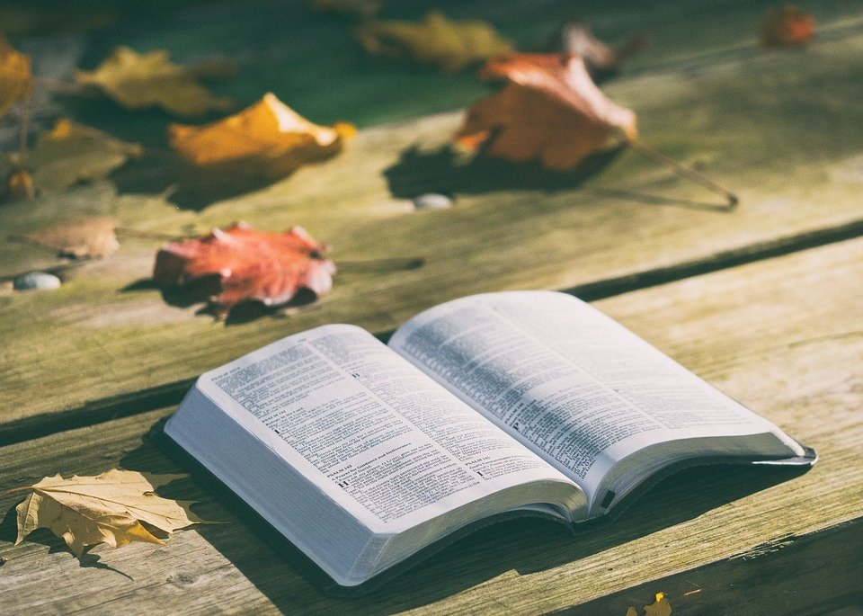 An opened bible outdoors during autumn. | Source: Pixabay
