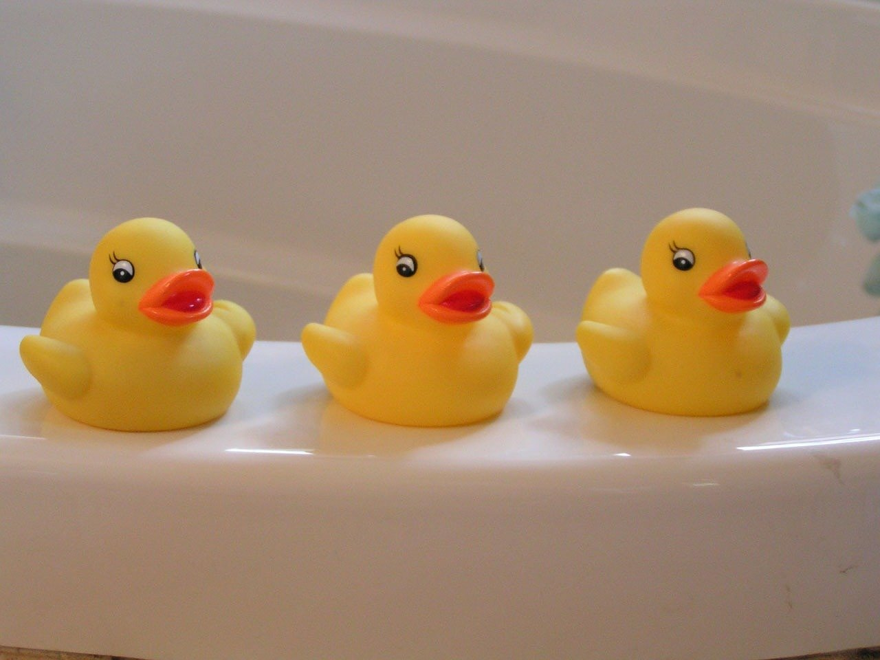 Rubber duckies in a row. Image credit: Pixabay