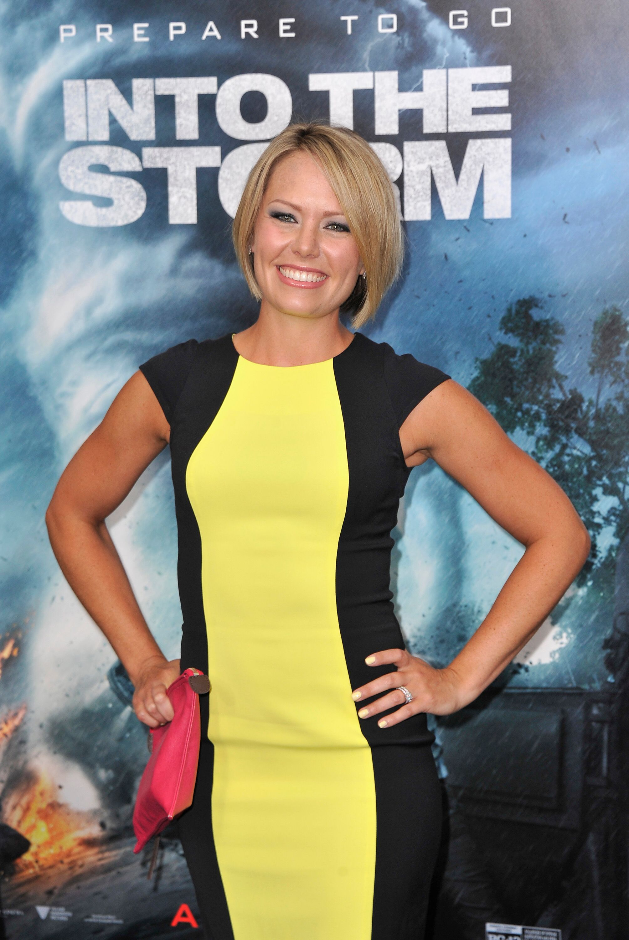 "Dylan Dreyer attends the ""Into The Storm"" premiere. 