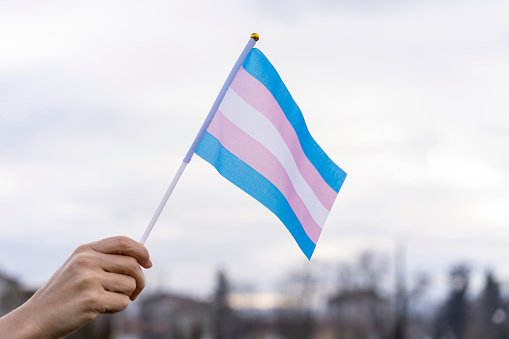 Transgender flag held in the sky | Photo: Getty Images