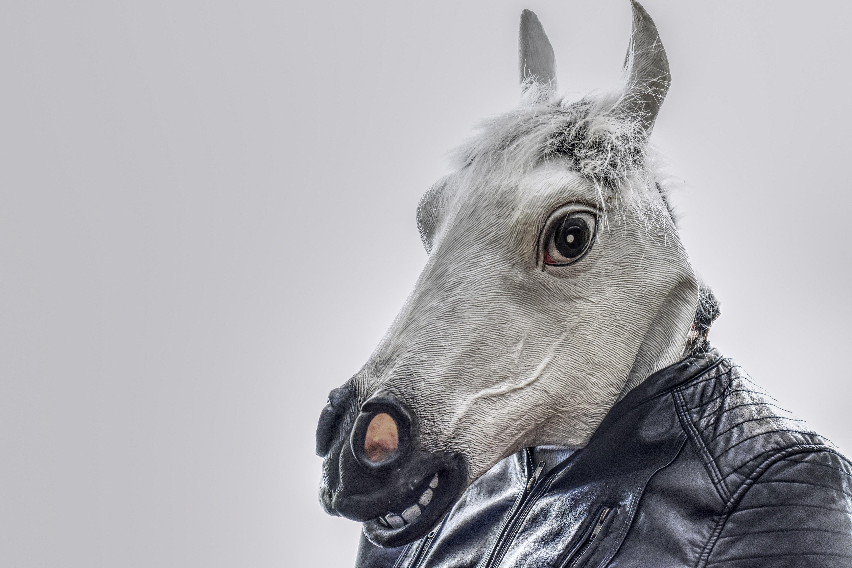 A funny-looking horse. | Source: Pexels