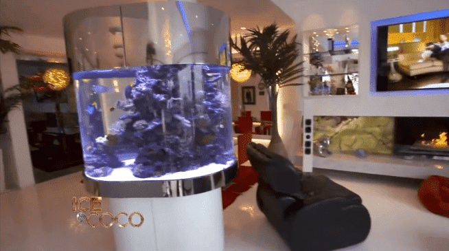 Coco Austin and Ice-T's aquarium in their mansion | Source: YouTube/Cocosworld