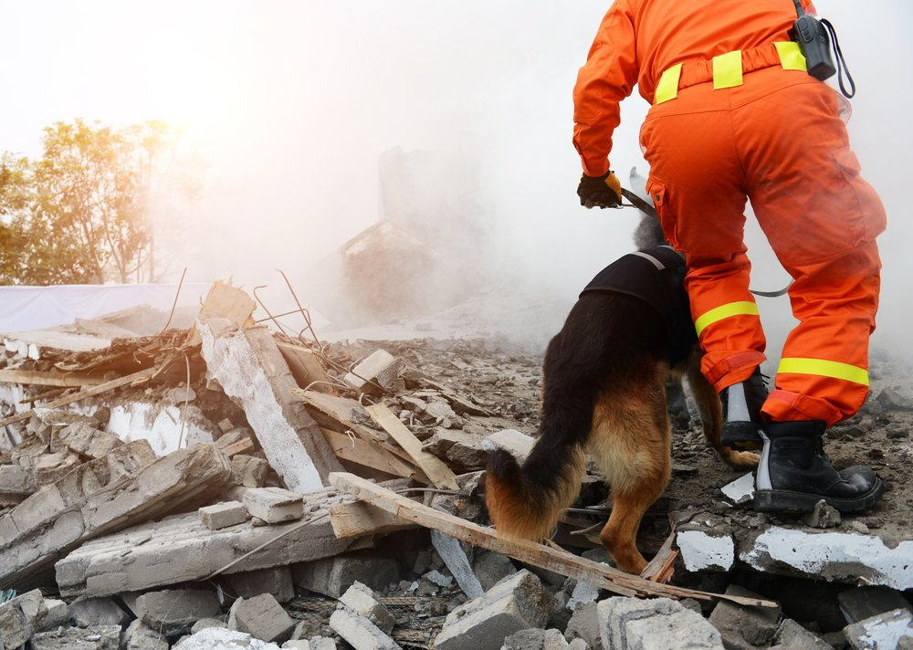 A photo of a rescue team at the sight of a collapsed building. | Photo: Shutterstock