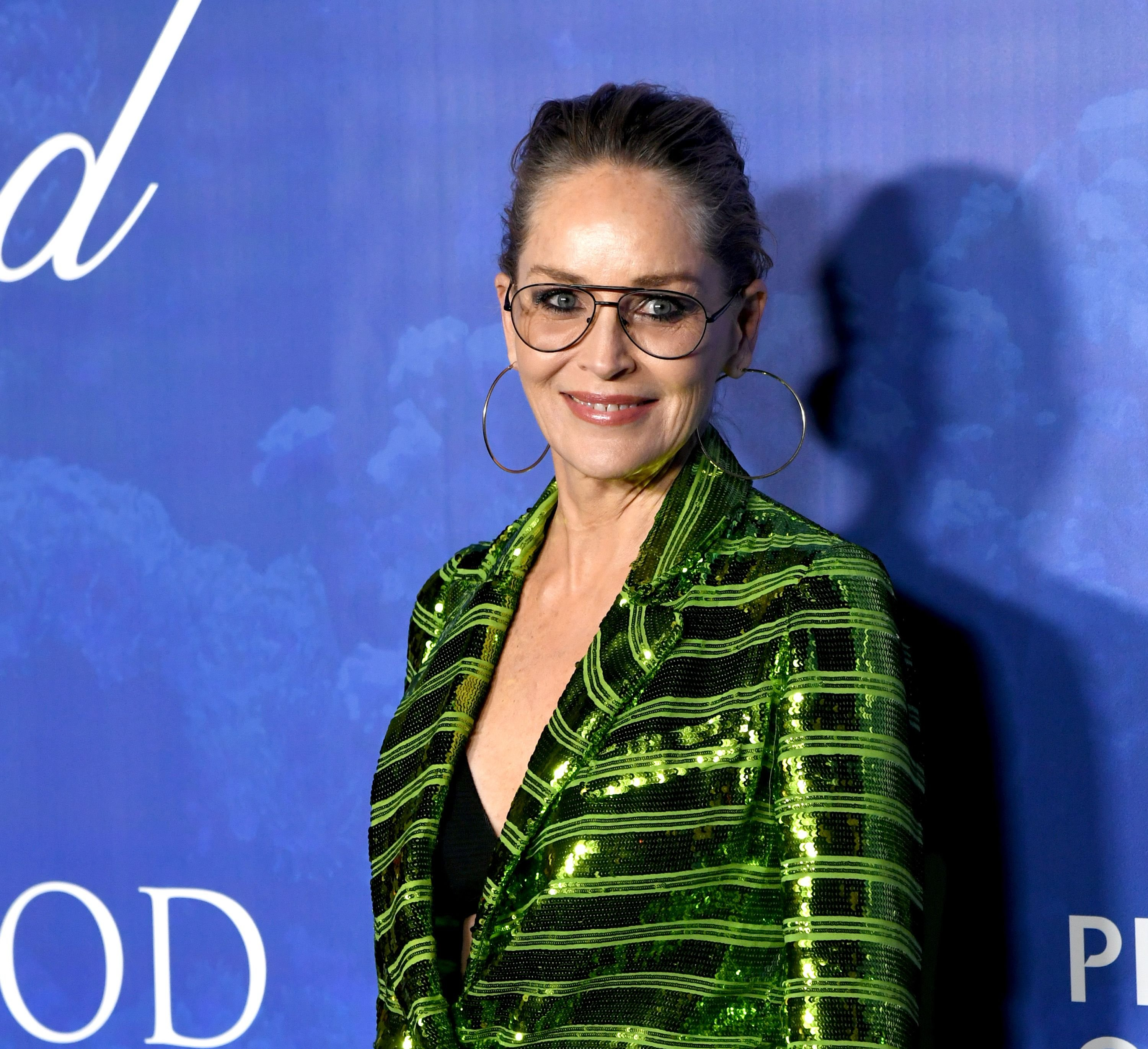 Sharon Stone at the 2020 Hollywood for the Global Ocean Gala Honoring HSH Prince Albert II Of Monaco on February 06, 2020 | Photo: Getty Images