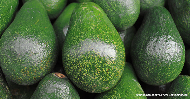 USA Could Be Left without Avocados if President Trump Shuts down the Mexican Border