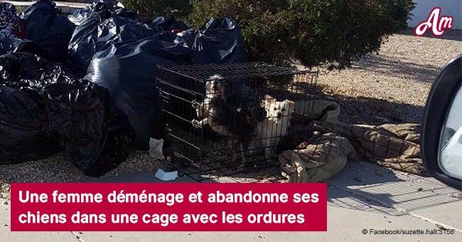 Une femme déménage et abandonne ses chiens dans une cage avec les ordures