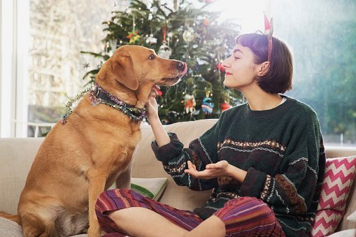 Woman cuddles dog, sitting on sofa in front of the Christmas tree | Photo: Getty Images