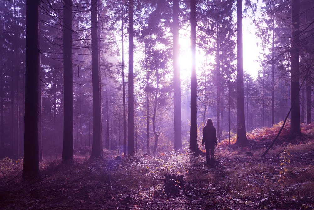 A photo of a woman walking into the woods   Photo: Shutterstock